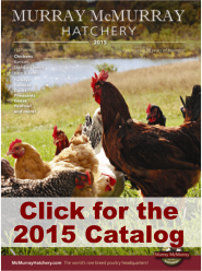 Canada Goose vest sale 2016 - Murray McMurray Hatchery - Catalog Request