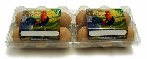 Murray mcmurray hatchery plastic egg cartons for Design your own egg boxes