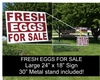 Fresh Eggs for Sale Yard Sign
