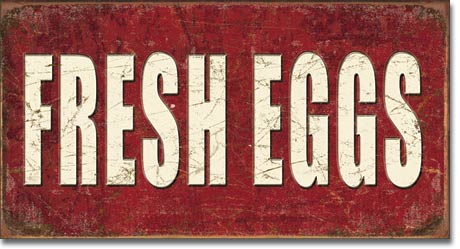 Fresh Eggs Tin