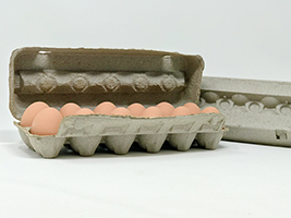 Paper Mache Egg Carton | MurrayMcMurray Hatchery | egg carton
