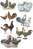 McMurray Hatchery special Assorted Bargin Jacky art drawing
